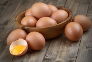 Food allergy testing center in Gainesville FL eggs