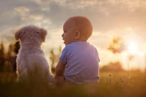 Babies with a dog in the home may have a lower risk of asthma and eczema HTML view Note